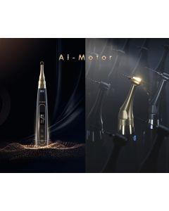 AI-MOTOR M. M.M. Endodontico con RIVELATORE APICALE Woodpecker SPECIAL EDITION